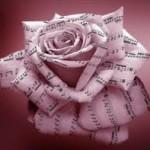 Escuela de música Virtuosso